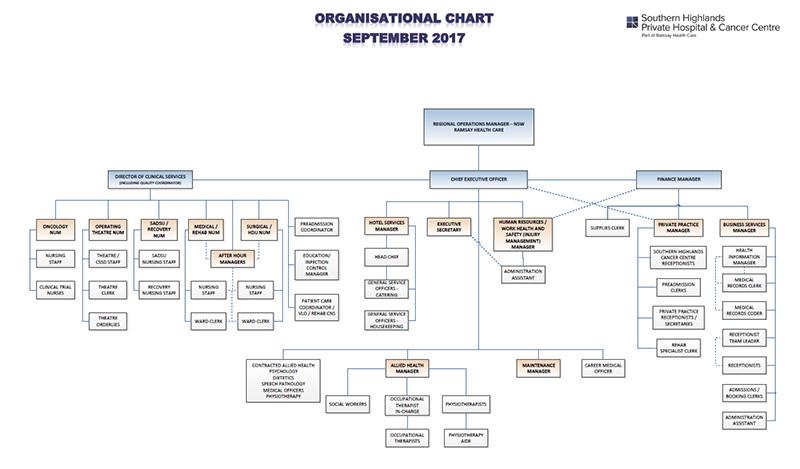 Free Download Hospital Organizational Charts  Edraw Max